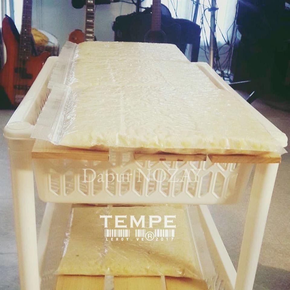 Tempe by Vetrarini Leroy