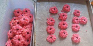 Cookies Praktis by Shaima