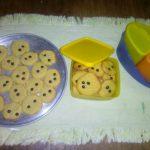 Biskuit Choco Chip by Novita Rose