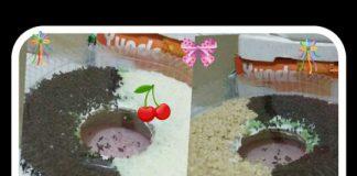Brownis Kukus dan Bolu Pandan by Putrye Handayani