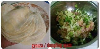 Gyouza/Dumpling Ayam by Sari Prabowo