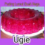 Puding Lumut Buah Naga by Sugie Artie Nasa
