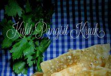 Kulit Pangsit by Ainie Dihati Adjie