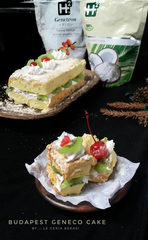 Budapest Geneco Cake