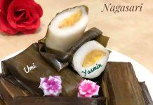NAGASARI by Fah Umi Yasmin