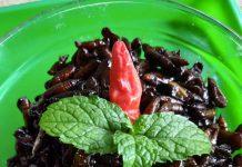 UNGKRUNG/KEPOMPONG ULAT JATI BUMBU BACEM by Rhimaalia Marhendiaana Putri