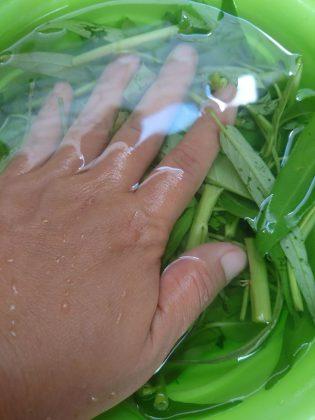 Cara Memasak Tumis kangkung by Nanda Sukesi 1