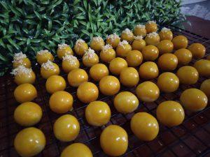 penjelasan ahli baking TIPS MEMBUAT NASTAR by Dapur Ummu Fatih