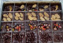 Percobaan BROWNIES PANGGANG by Dini Sundari